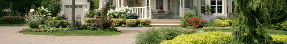 Front Yard Curb Appeal Ideas For Selling Your Home