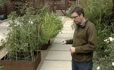 video concrete walkway design landscaping network