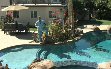 Video: Tropical Backyard Pool & Spa Ideas - Landscaping Network